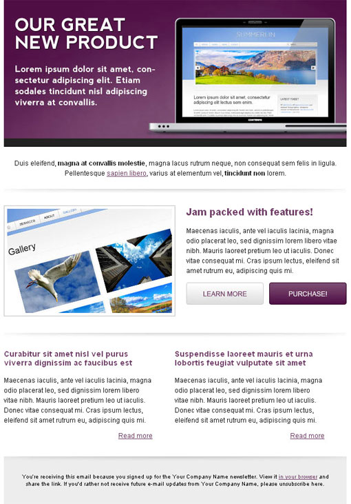HTML Email Newsletter Templates - Newsletter html template