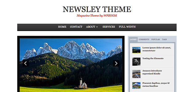 Newsley Theme