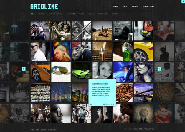 gridline Photography Theme for WordPress