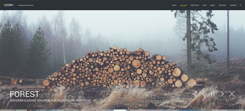 21 New WordPress Themes for Photographers – 2014