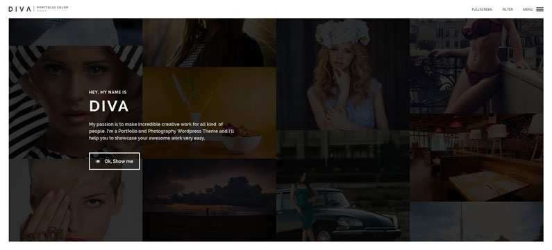 Diva - photographer WordPress theme