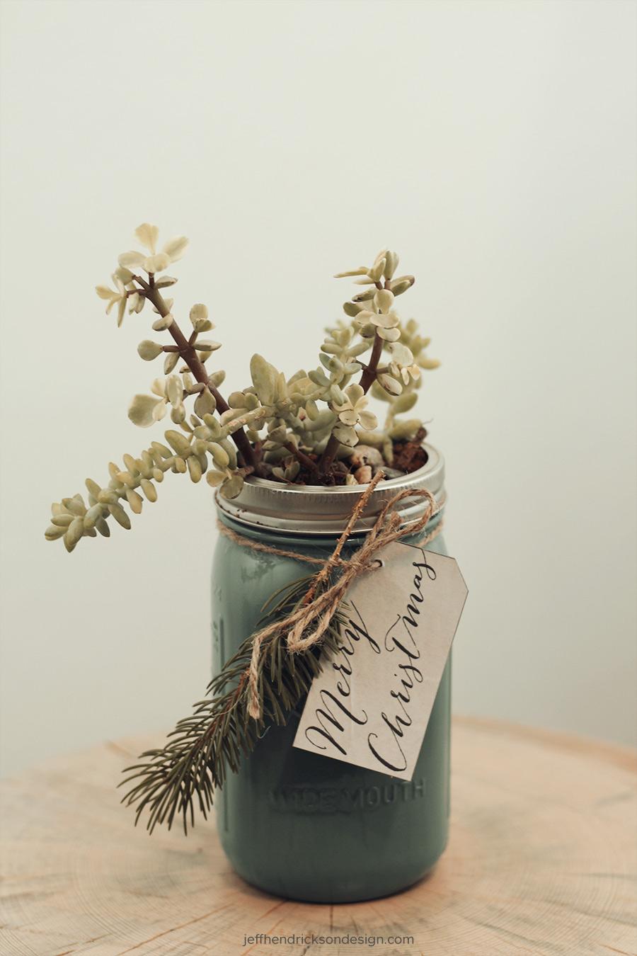 Succulent gift in mason jar