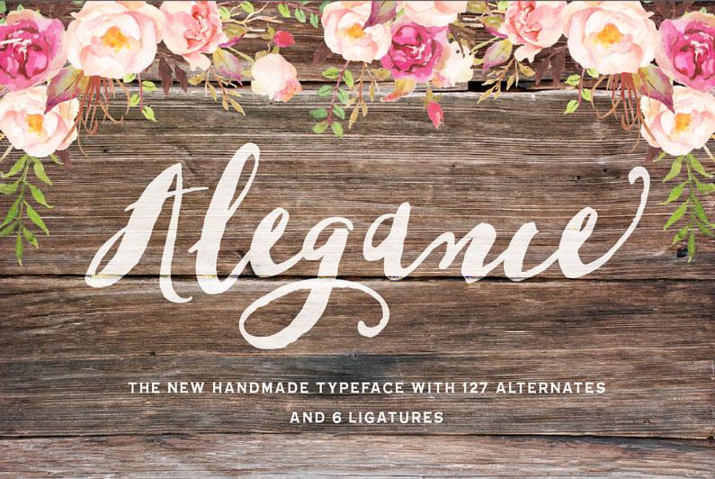 Alegance Font Script