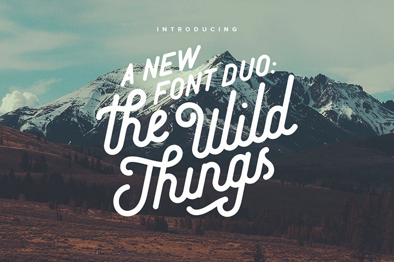 The Wild Things – A New Vintage Font Duo