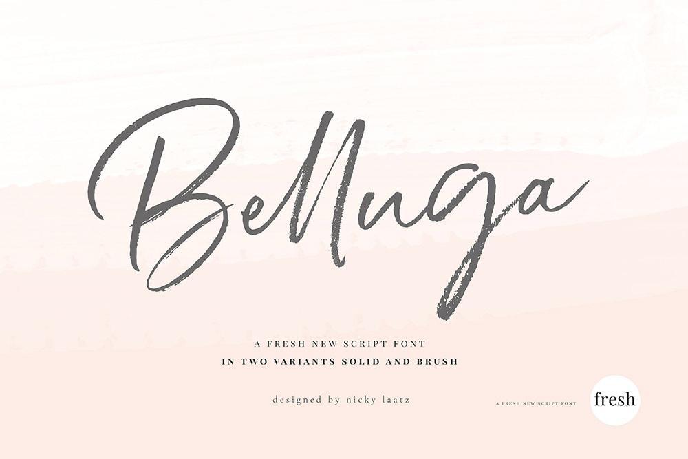 Belluga Script Font