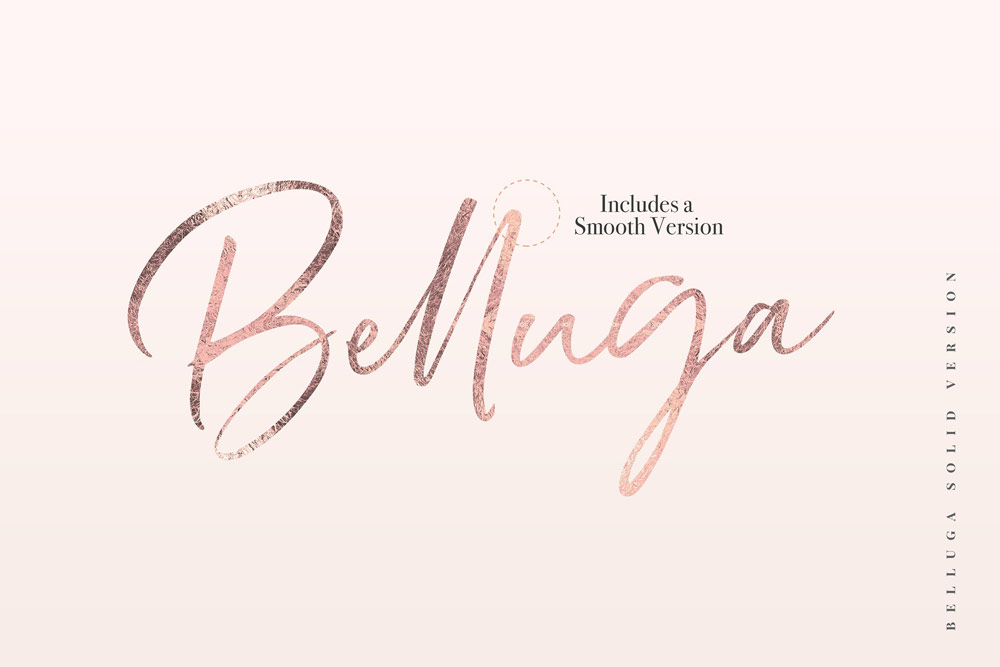 Belluga Brush Script Font with gold foil