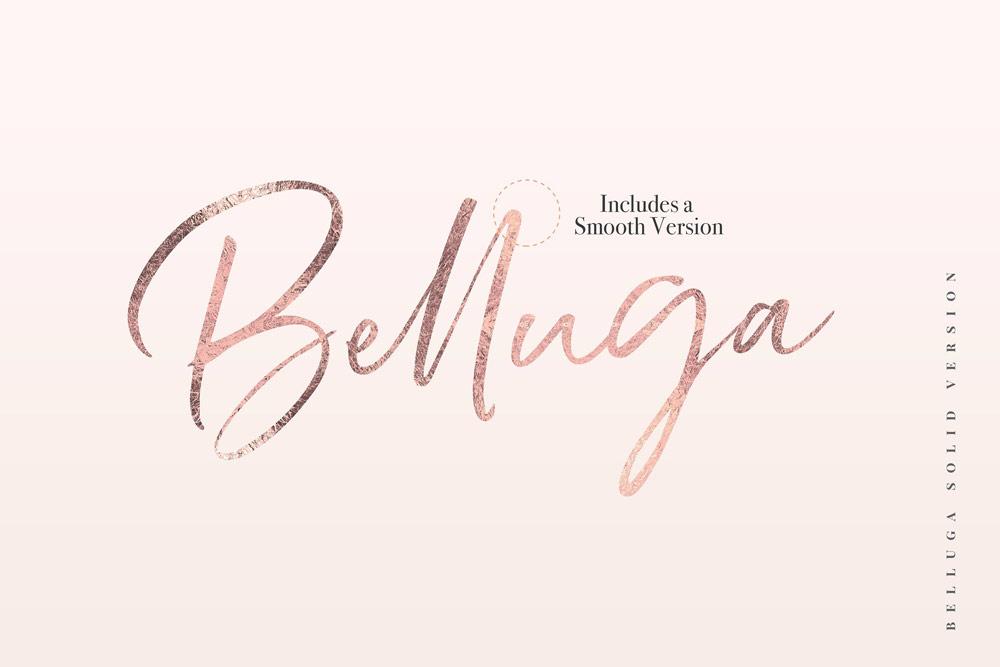 Belluga Brush Script Font with gold foil