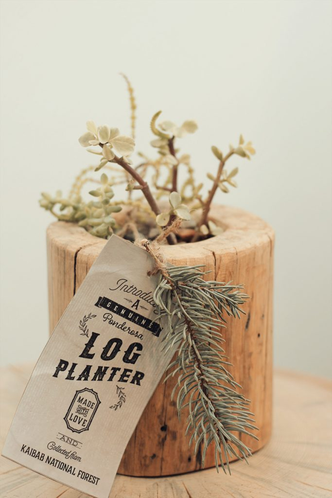 log-planter-by-jeff-hendrickson