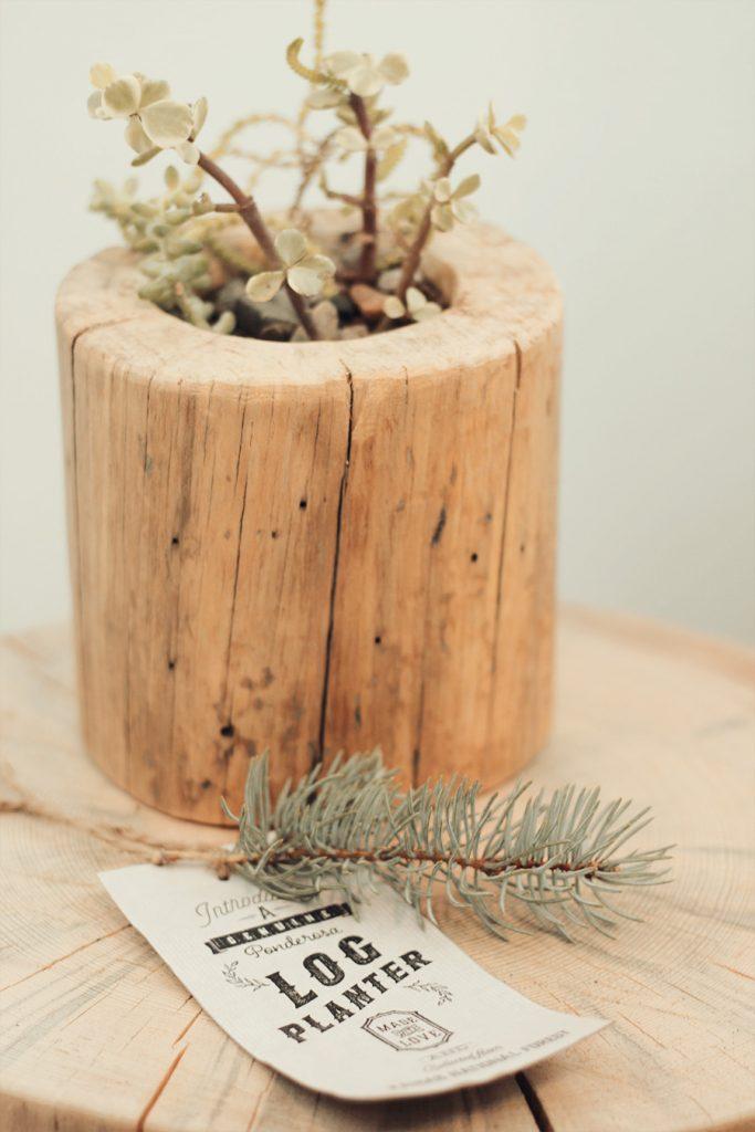 log-planter-by-jeff-hendrickson2